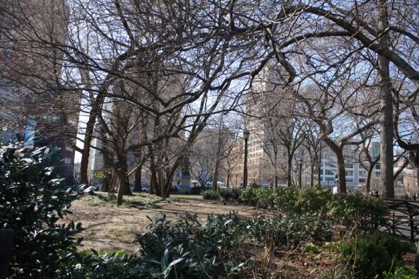 Union Square Park,  New York, NY., 12th March 2011. © J. Lynn Stapleton