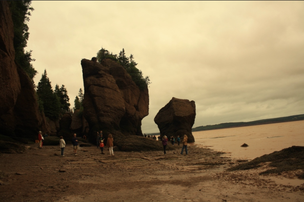 Hopewell Rocks, 9th August 2011, © J. Lynn Stapleton