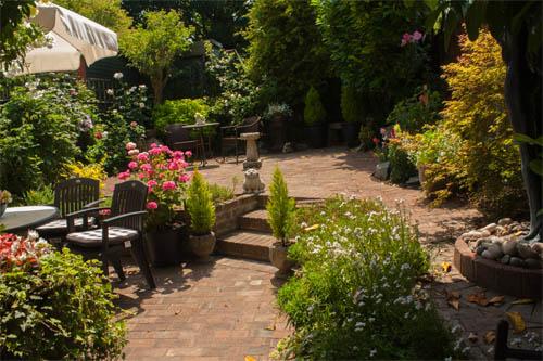 Pam's garden, Epsom, UK. © J. Lynn Stapleton, 18th July 2013