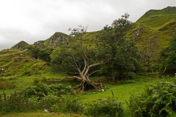 Faerie Glen, Isle of Skye. © J. Lynn Stapleton, 3rd August 2013